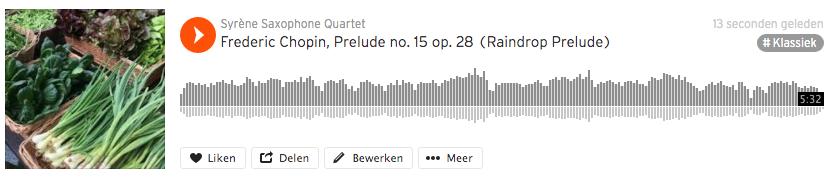 Regendruppelprelude - Chopin